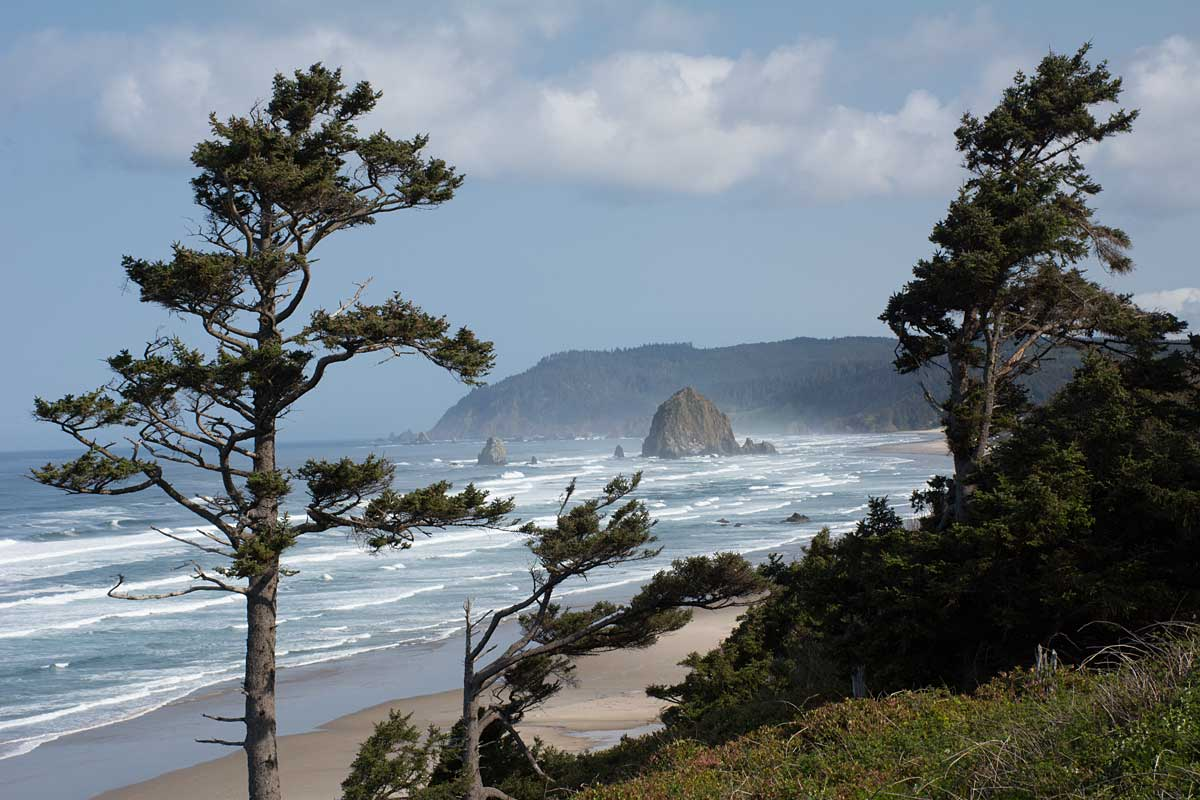 wr  DKA6545 Oregon coast